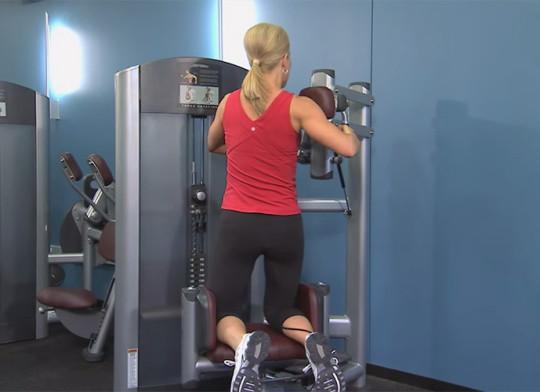 Maszyna do treningu mięśni skośnych - Life Fitness Torso Rotation