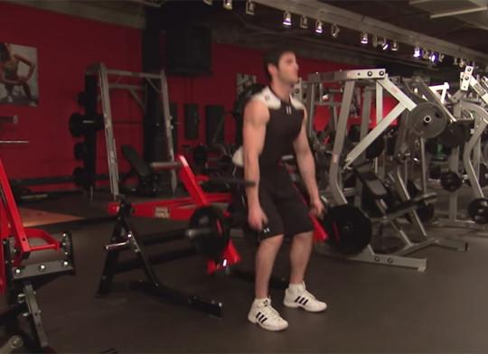 Maszyna Squat Lunge